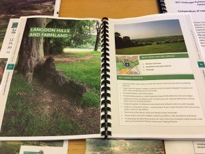 'Land of the Fanns' proposals outlined in an accessible, engaging way